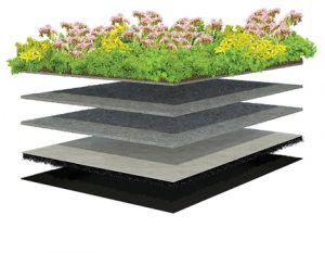 Exploded 3D of XF301 Sedum Standard lightweight low maintenance system that do not require loose growing medium.