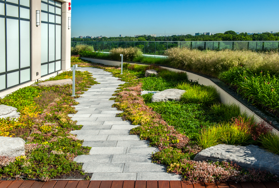Next Level Stormwater Management Designing Extensive And