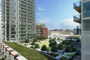This green roof provides valuable green space in an urban setting and is visible from surrounding condo towers.